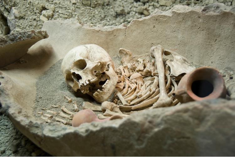 A la découverte du squelette le plus vieux d'Amérique - 1