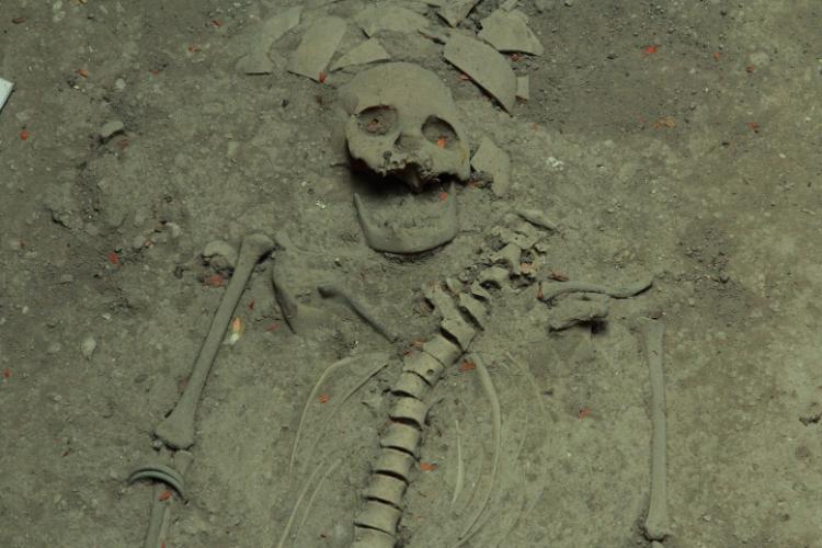 A la découverte du squelette le plus vieux d'Amérique - 2