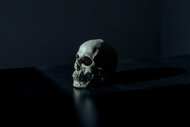 Histoire et symbolique des têtes de mort - 2