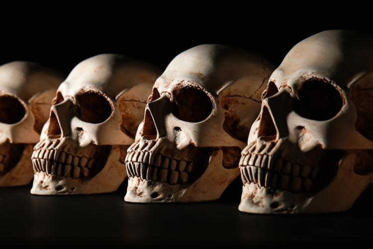 La prophétie des 13 crânes de cristal - 1