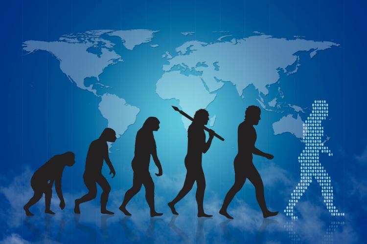 Les sept crânes cachés de l'évolution humaine - 1