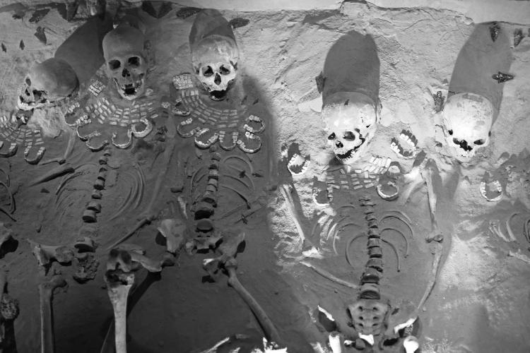 Les squelettes géants de Crimée - 2
