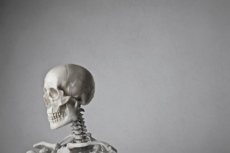 L'homme qui a transporté son crâne dans une boîte - 1